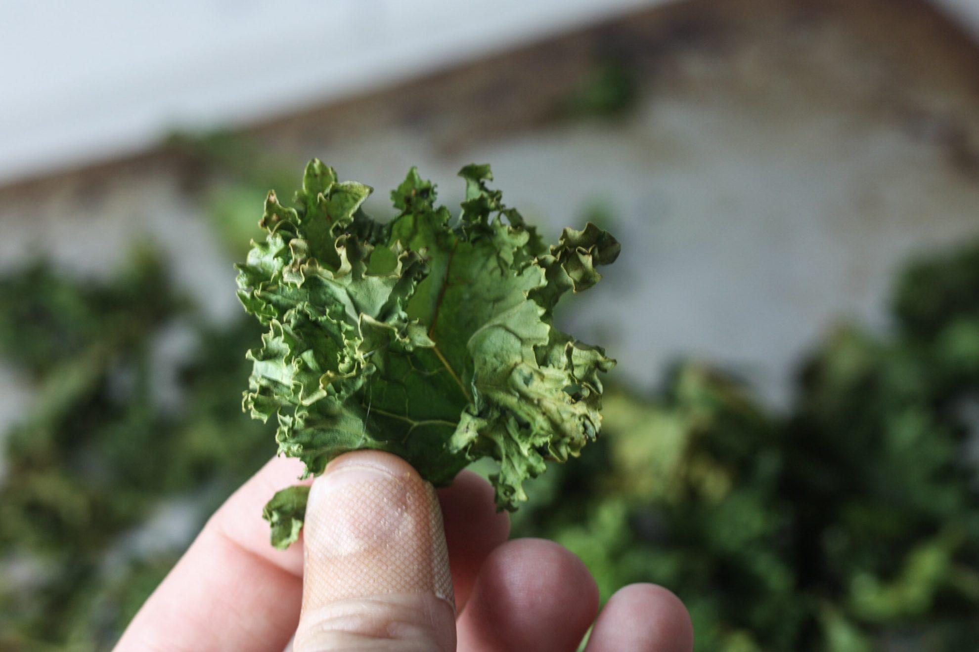 Kale Chips recipe via Mince Republic