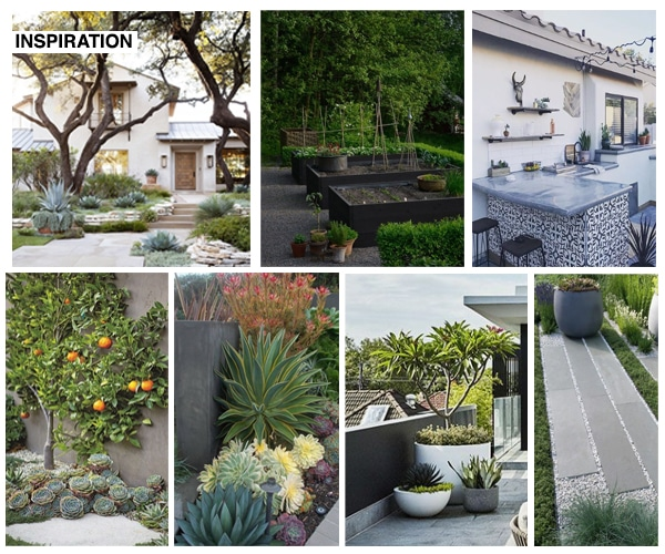 backyard inspiration collage of photos with olive trees black veggie beds outdoor kitchen succulents